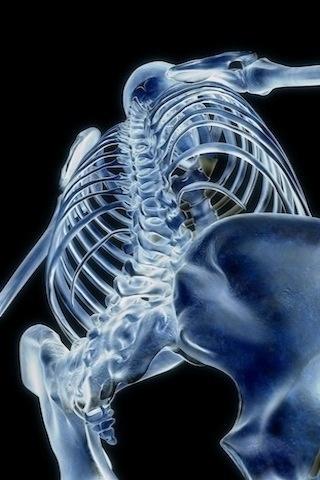一是人体_医学3D人体美图赏析-人体解剖图,_医学图库